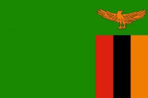 zambie-300x199
