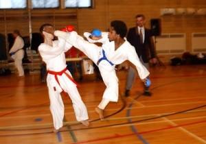 karate-300x2101