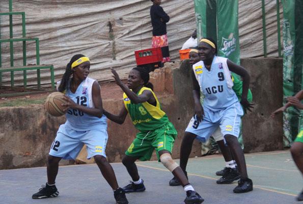 basket001pix