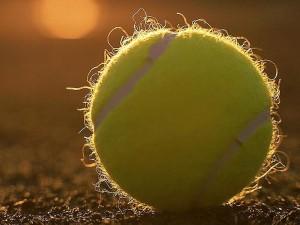 tennis-ball-300x225