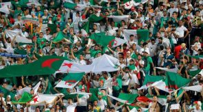 Algerian leagues