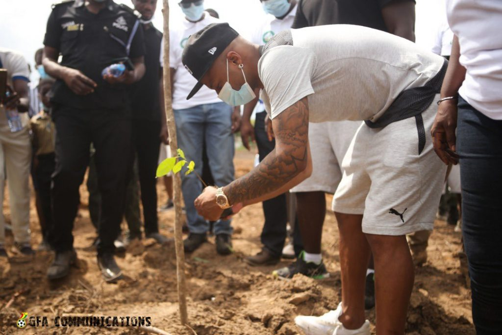 Black stars have had a tree-planting session before their last training.
